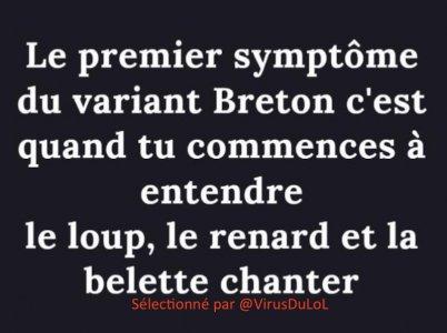 variant-breton-entend-le-loup-le-renard-et-la-belette-chanter.jpg